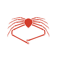 japanese spider crab vector image