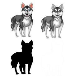 Set siberian husky vector