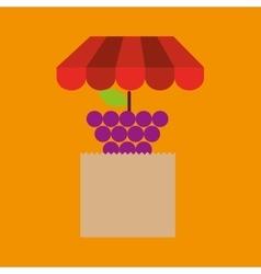 grape bag filled fruit offer design vector image vector image
