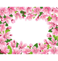 cherry blossom background pink spring flowers vector image