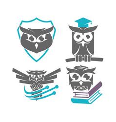 Owl shield education technology logo design vector