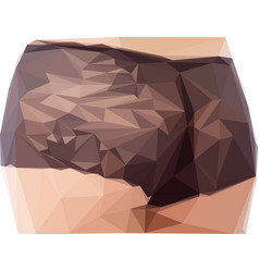 sexy woman buttocks in low poly vector image