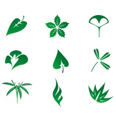 set of leaves icon vector image vector image