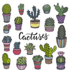 collection of hand drawn cactuses in sketch style vector image