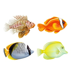 Four fishes vector image vector image