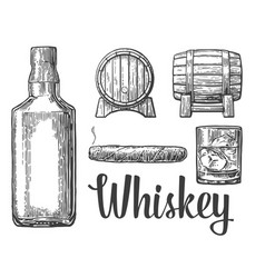 Whiskey glass with ice cubes barrel bottle cigar vector