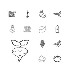 13 organic icons vector