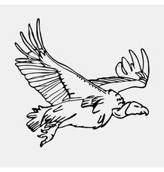 African birds 05 vector