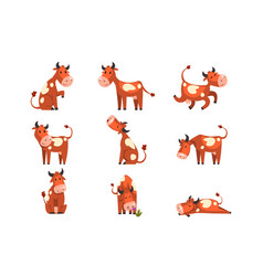 brown spotted cow set farm animal character in vector image