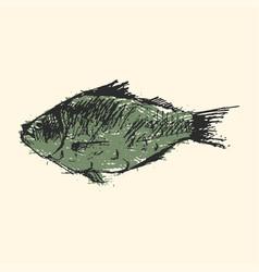 craft sketch fish vector image