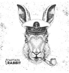 Hipster animal rabbit in captains cap vector