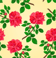 Seamless texture twig red rose vector