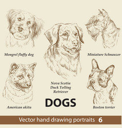 Set hand drawing dogs 6 vector