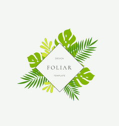 Tropical leaves fashion sign card or logo vector