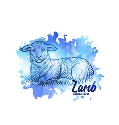 hand drawn sketch lamb natural lamb meat vector image vector image