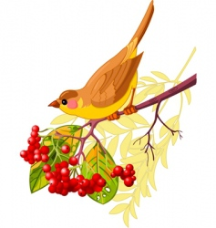 Autumn bird vector