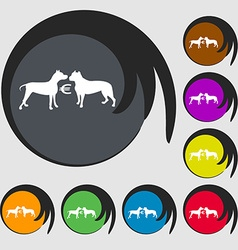 Betting on dog fighting icon symbols on eight vector