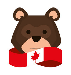 Canadian flag with bear grizzly vector