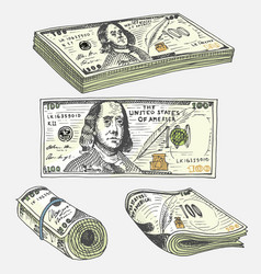 Detailed currency banknotes or american franklin vector