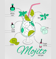 Mojito alcoholic recipe vector