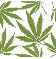 seamless pattern with leaves of hemp marijuana vector image