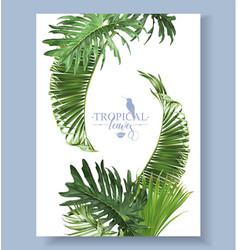 tropical leaves banner vector image
