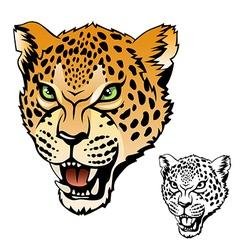 jaguar head vector image