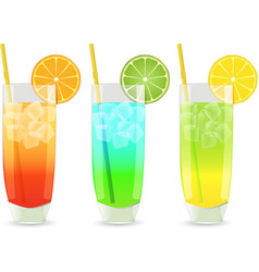 highball cocktail set vector image vector image