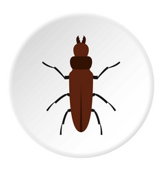 cockroach icon circle vector image