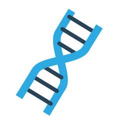 dna human genetic vector image