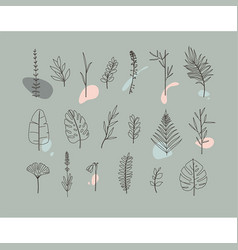 floral flat leaves set grey vector image