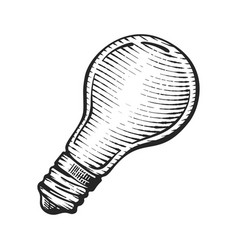 light bulb vintage engraved hand vector image