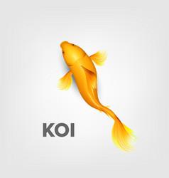 realistic oriental bright yellow koi fish vector image