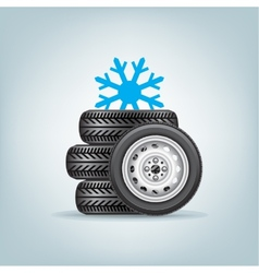 set of winter wheels vector image