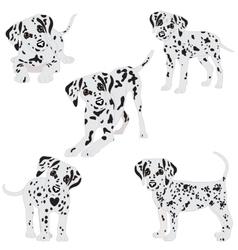Dalmatians cute sad vector image vector image