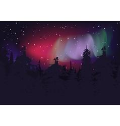 Aurora Boreal vector