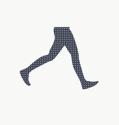 female legs silhouette vector image