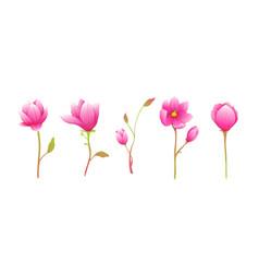 Flowers magnolia cute blooming twigs clip art vector
