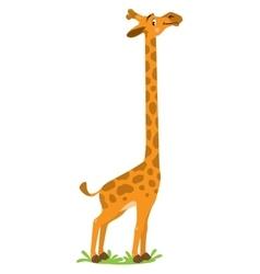 Funny smiling Giraffe vector image