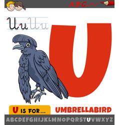 Letter u from alphabet with cartoon umbrellabird vector