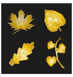 Set of golden leaves vector
