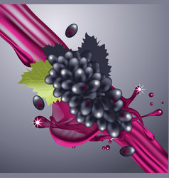 Splash grapes juice in motion vector