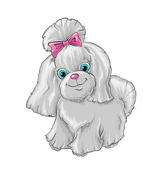 A cute dog yorkshire terrier vector