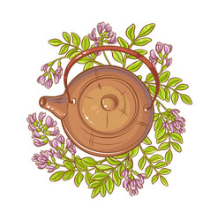 Astragalus tea in teapot vector