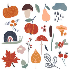 autums collection fall leaves berries vector image