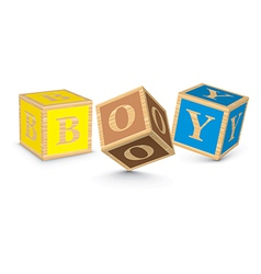 Word BOY written with alphabet blocks vector