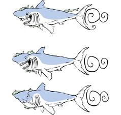Three great white sharks vector image
