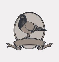 Vintage emblem pigeon vector