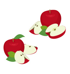apple pieces set whole red apple fruit with slice vector image