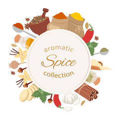 Aromatic spices collection cartoon herbs and vector